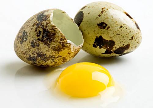 putpelių kiaušinių nauda hipertenzijai visiškai išgydyti hipertenziją