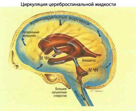 Hipertenzinio-hidrocefalinio sindromo simptomai ir gydymas vaikams ir suaugusiems - Traumos -