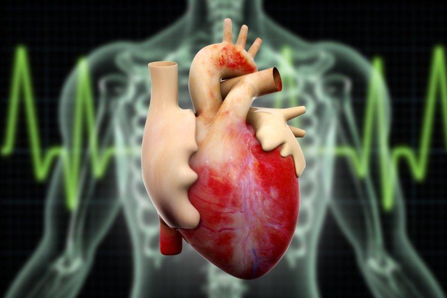 Kodėl reikia sunerimti, jei svaigsta galva ar skauda širdies plote? - Altamedica klinikos