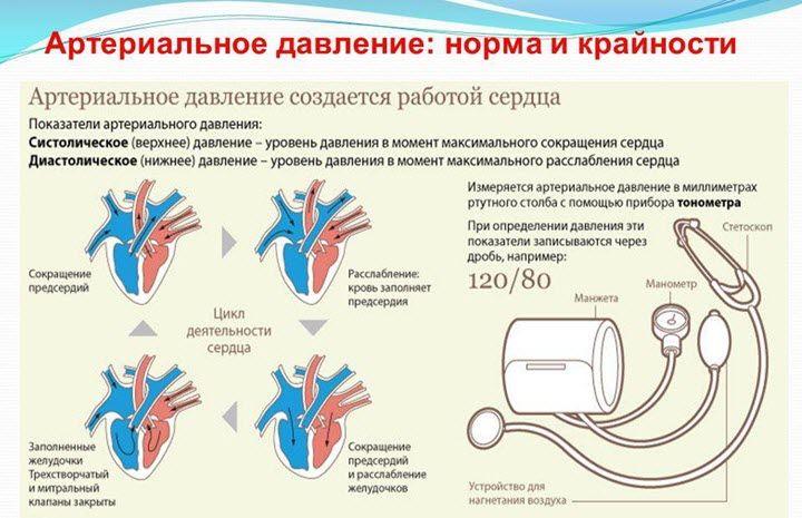 vegetacinė-kraujagyslinė distonija ir hipertenzija