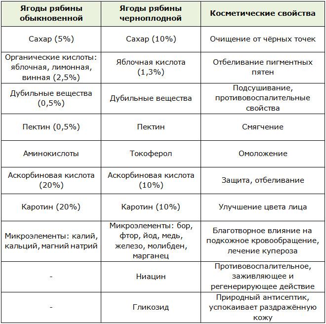 vaistinės raudonųjų kalnų pelenų savybės hipertenzijai gydyti