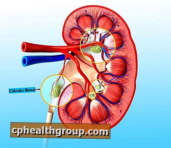 Centrinio poveikio antihipertenziniai vaistai | taf.lt