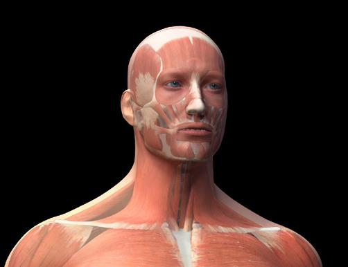 raumenų hipertenzijai būdinga