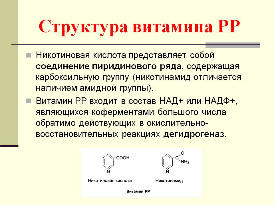 Nikotino rūgštis smegenų kraujagyslių aterosklerozėje - Pūslės - November