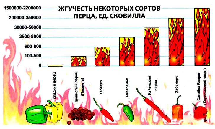 sveiko maisto, kurį turėtumėte valgyti | taf.lt