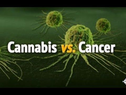 hipertenzija ir marihuana