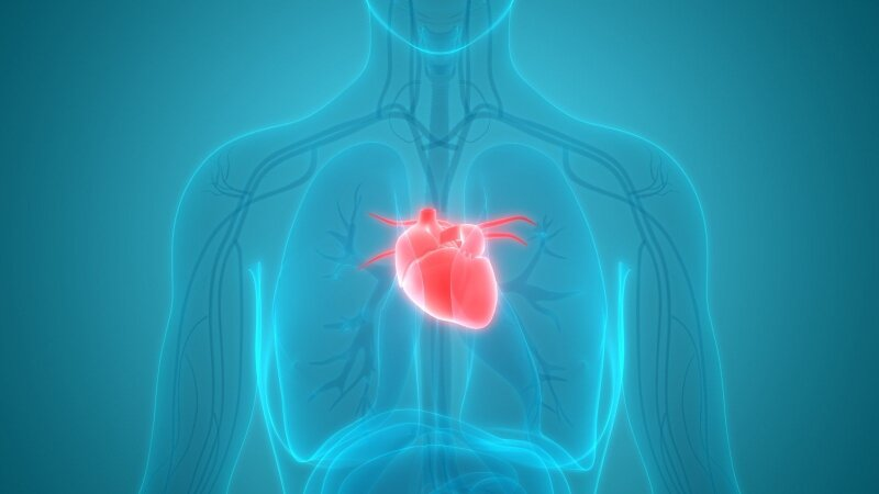 maisto produktai, kuriuos reikia valgyti sergant hipertenzija