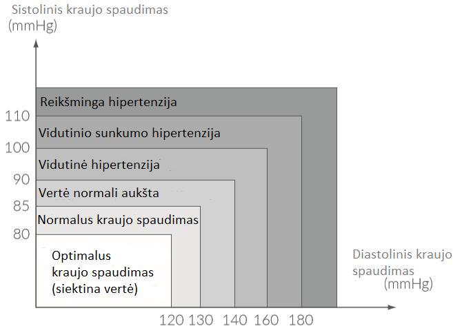 hipertenzijos priežiūros standartas