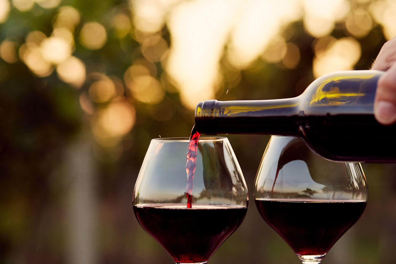 geriausias laikas gerti vyną sveikatai