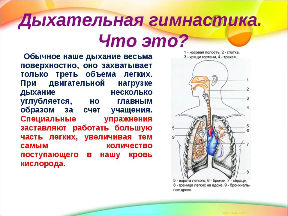 Hipertenzijos žodynas