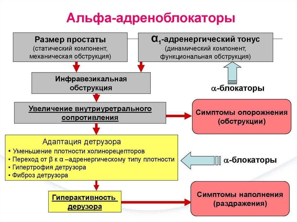 širdies ritmo kintamumas ir sveikata Dr. Evdokimenko apie hipertenziją