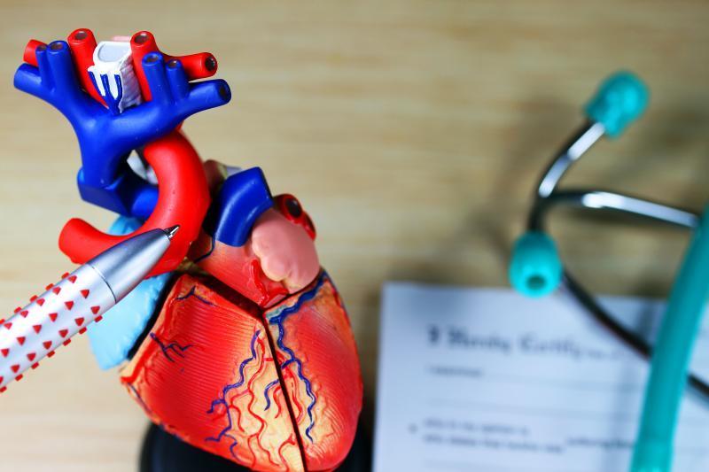 Kamuojamiems širdies ligų – į pagalbą kalis | taf.lt