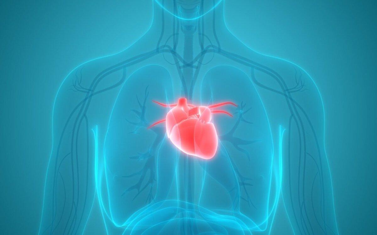 """""""Raudona suknelė"""" sieks atkreipti dėmesį į moterų širdies ir kraujagyslių ligų prevenciją"""