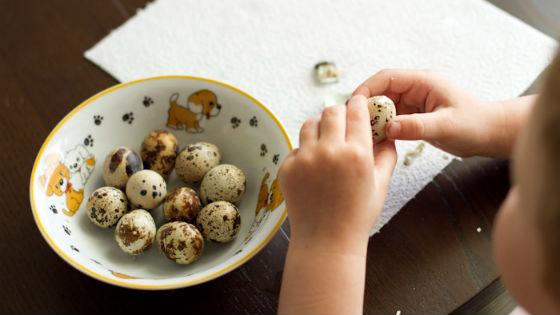 Putpelių kiaušinių gydymas - Aliejus