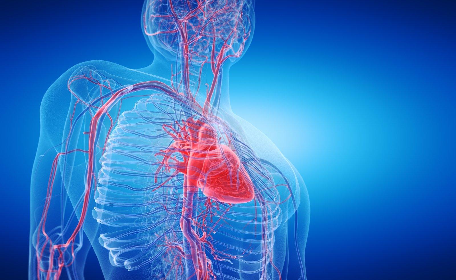 širdies sveikatos nerimas
