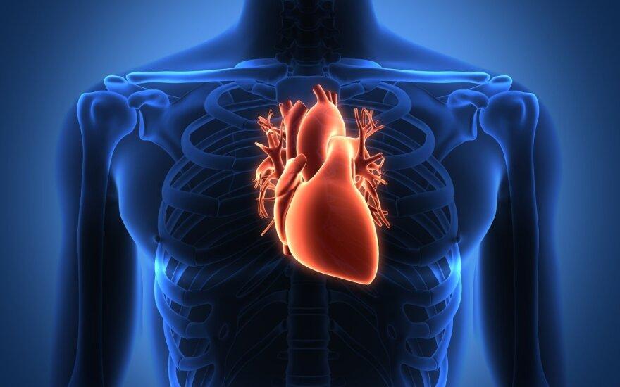 alkoholis širdies sveikatai