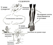 Helis hipertenzijai gydyti