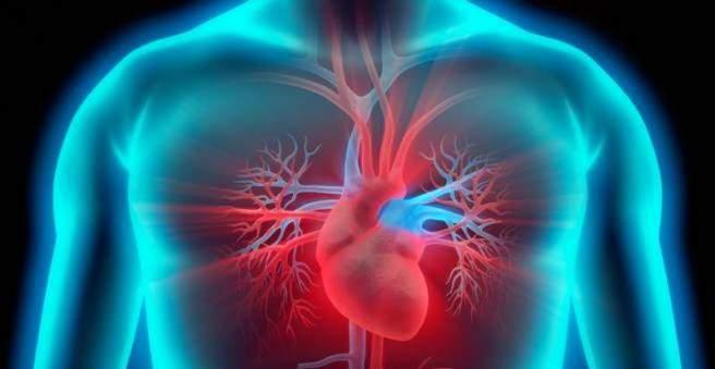 crp širdies sveikata