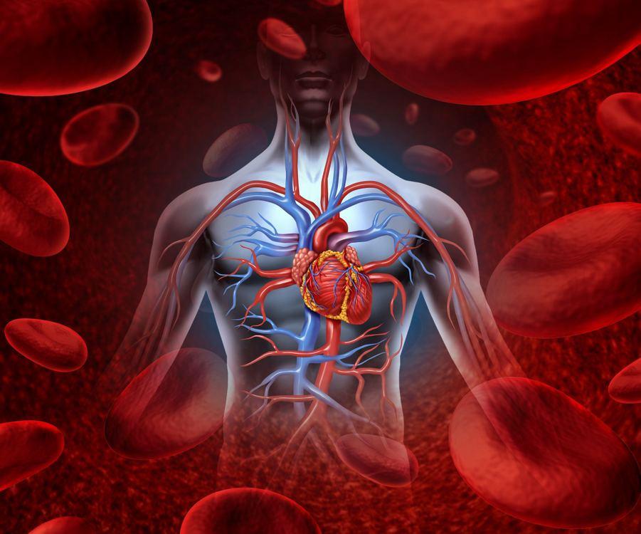 pasaulinė hipertenzijos diena sportinė mityba sergant hipertenzija