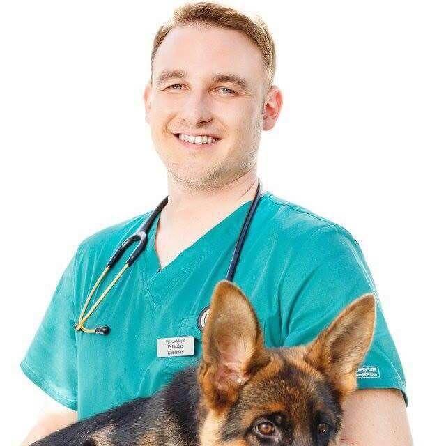 naminių gyvūnėlių sveikata alternatyvus gydymas šunų širdies kirminais