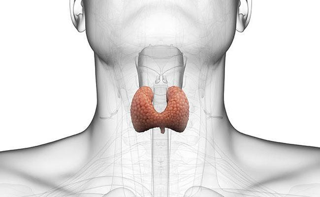 Subklinikinės hipotirozės diagnostika ir gydymas | taf.lt