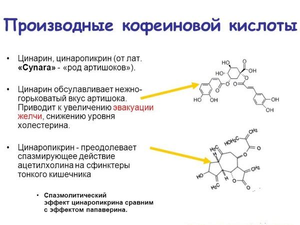 Patogenezinis smegenų kraujagyslių ligų gydymas vinpocetinu | e-medicina