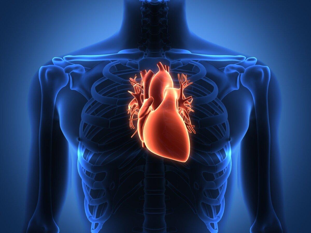kokia veikla yra pavojinga širdies sveikatai