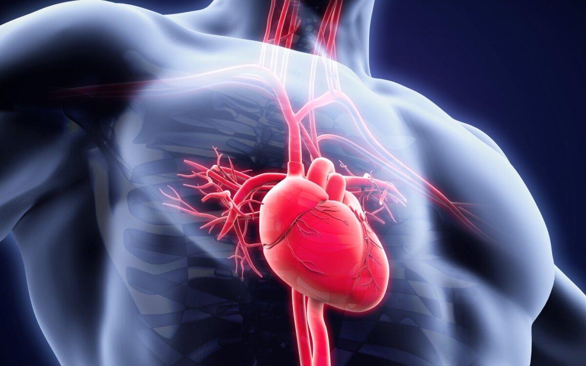 ar galima gerti širdies hipertenziją širdies sveikatos įvertinimas