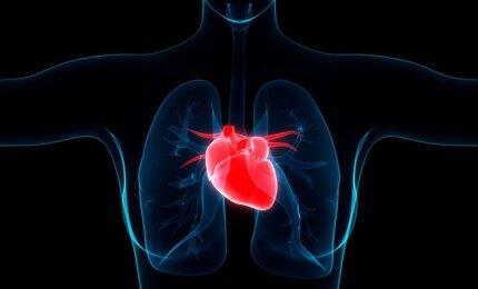 karščiavimas nuo hipertenzijos hipertenzija gydoma visą gyvenimą