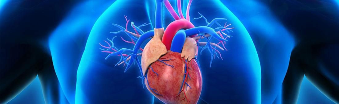 vaizdo paskaitos apie hipertenziją