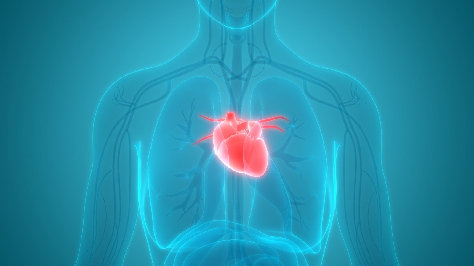 Širdies ligomis serga vis jaunesni: sveikatą gali išsaugoti žmonos?