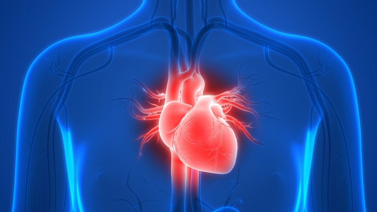 širdies nepakankamumo su hipertenzija vystymasis