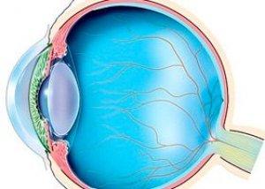 hipertenzija jauniems vyrams hipertenzija skrenda prieš akis
