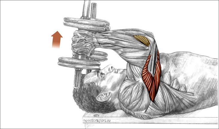 draudžiami pratimai sergant hipertenzija