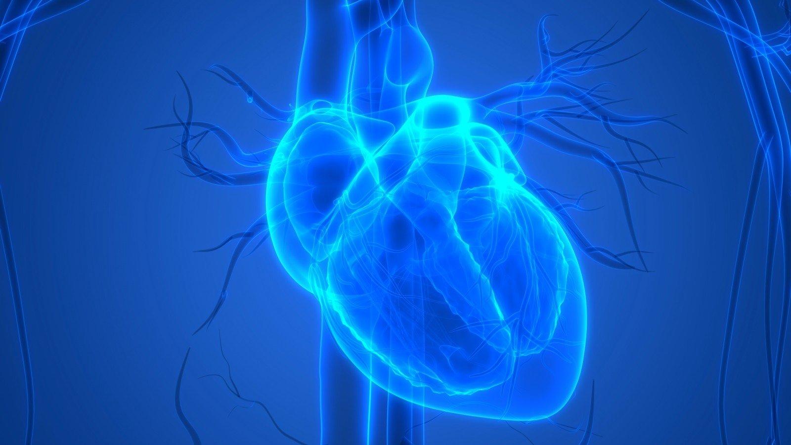 Sutrikus širdies ritmui svarbu nepanikuoti