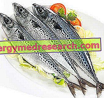 išsiaiškinti hipertenzijos laipsnį jūros druska vonioms hipertenzija