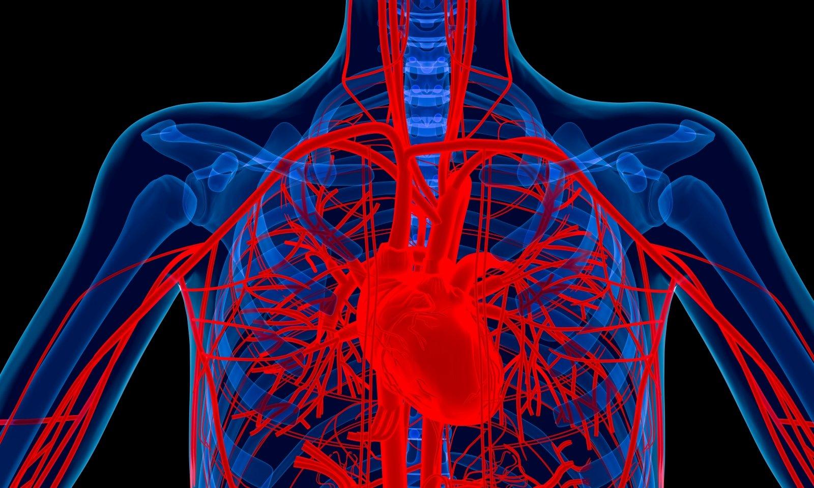 moterų širdies sveikata gma pratimų, skirtų numesti svorį su hipertenzija, rinkinys