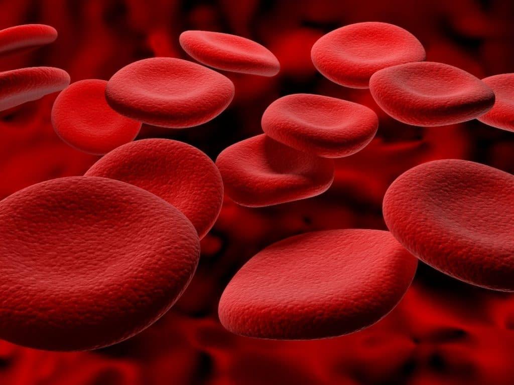 sergant hipertenzija, padidėja cholesterolio kiekis hipertenzija pagal ligos kodą